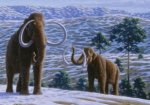 woolly_mammoth_cropped
